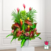 beretania florist birch tropical arrangement