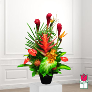 beretania florist thurston tropical arrangement