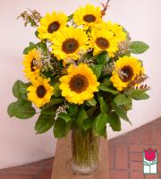 Beretania's Sunflower Bouquet