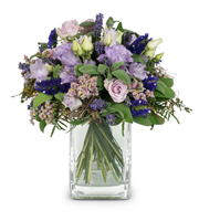 Scent of Summer with Lavender