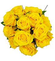 Affection - 12 Yellow Roses