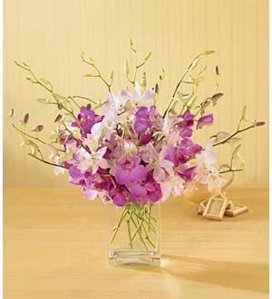 The FTD® Exquisite Exotics™ Bouquet