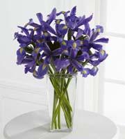 The FTD® Iris Riches™ Bouquet
