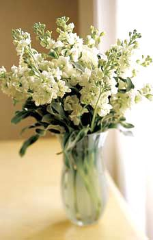 The FTD® White Delight™ Bouquet