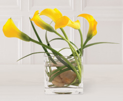 The FTD® Instant Happiness™ Arrangement