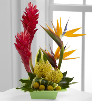 L'Arrangement FTD®, Exotica™