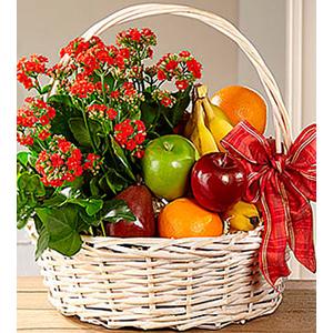 Garden\'s Paradise Basket