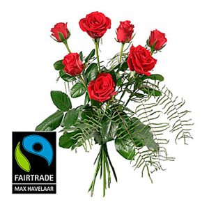 7 Red Max Havelaar-Roses Short Stemmed with Green