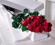 The FTD® One Dozen Boxed Roses