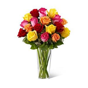 Bright Spark Rose