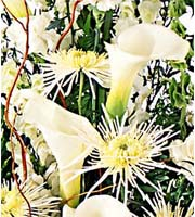 Sympathy Easel Florist Designed