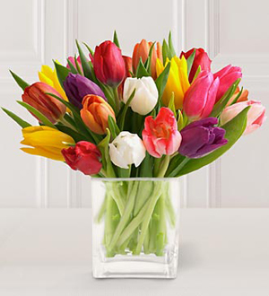 20 Stem Mixed Tulip Bouquet with Glass Vase