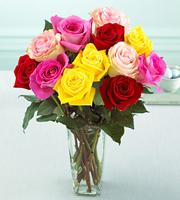 1 Dozen Medium Stem Mixed Colored Roses - with Vase