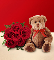 1/2 Dozen Red Roses and Bear - wrapped