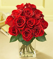1 Dozen Red Medium Stem Roses - with Vase