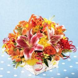 Nikos Flower Designs Birthday Bash Basket Chicago IL 60647 FTD