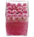 Arreglo de rosas rosas