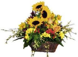 Arrangement of Summer Mixed Flowers