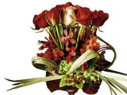 Romance Arrangement