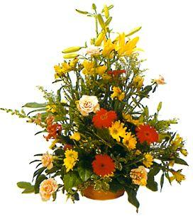 Arrangement of Cut Flowers