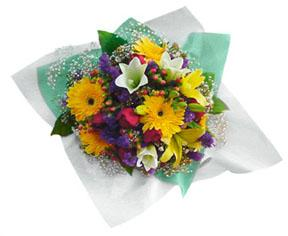 Mixed Cut Flowers