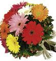 The FTD® Bouquet de margaritas africanas