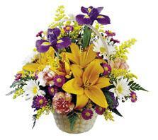 Le bouquet Merveilles de la nature ™ de FTD®