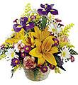 FTD® Bouquet Natural Wonders ™