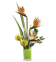 The FTD® Tropical Bright™ Arrangement