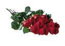 La boîte d une douzaine de roses