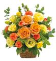 Arrangement in Yellow and Orange