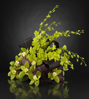 The FTD® Evening Glamour™ Luxury Bouquet