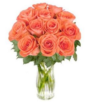Bunch of Orange Roses \