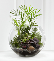 The FTD® Woodland Greens™ Terrarium