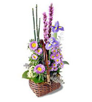 The FTD® Sweet Peace™ Basket