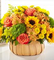 Panier Harvest Sunflower
