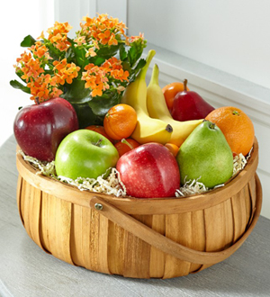 The FTD® Plant and Fruit Basket