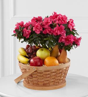 The FTD® Encircling Grace™ Fruit & Plant Basket