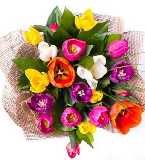 Truly Tulip Bouquet Rainbow
