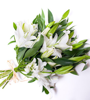 Graceful Lily Bouquet