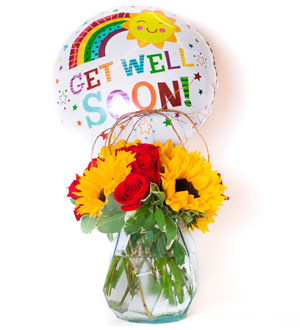 Sunny Rose Garden Red Get Well Bundle