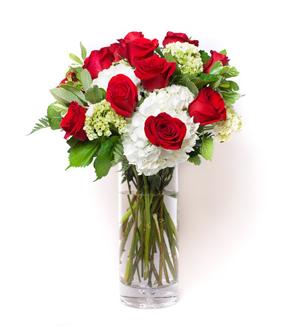 Rose Hydrangea Garden Red
