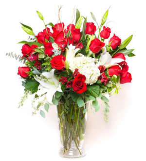 Two Dozen Rose Red