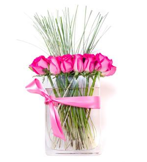 Modern Rose Pink