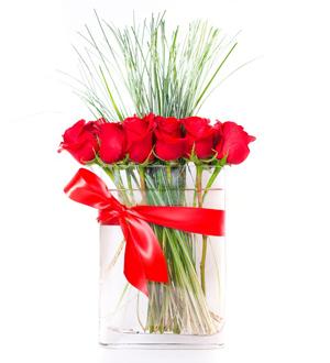 Modern Rose Red