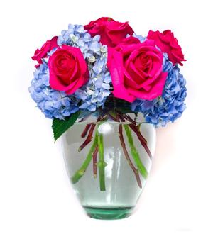 Rose Hydrangea Medley Pink
