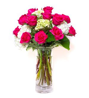Rose Hydrangea Garden Pink