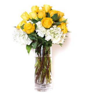 Rose Hydrangea Garden Yellow