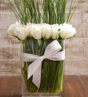 Modern Rose White