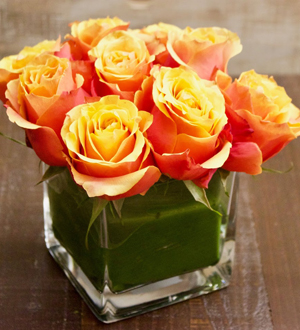 Rose Pave 9 Stem Orange